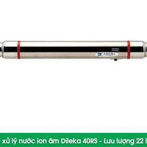 Hệ thống xử lý nước đầu nguồn Dileka 40RS